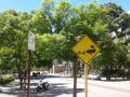 Perth 10