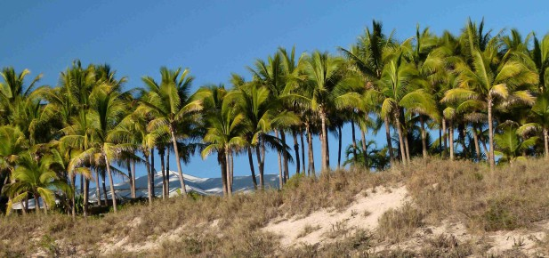 Až do Broome v Západní Austrálii s vízem od Kukabary