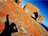 Poplatek za studentské vízum do Austrálie - Kukabara
