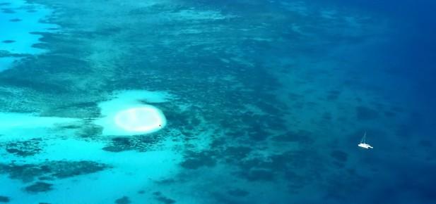 Studium v Cairns a Great Barrier Reef patří k sobě...