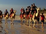 Cable Beach a velbloudi - to patří k sobě...