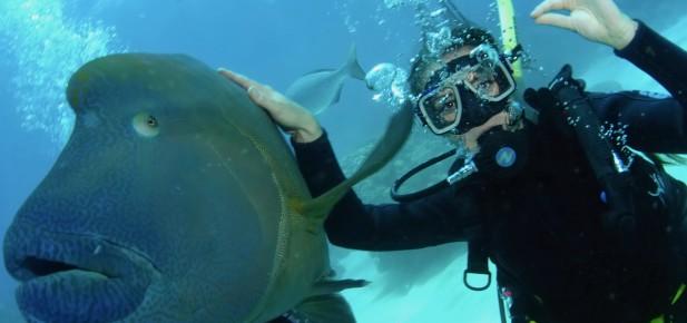 Cairns a potápění - to patří k sobě...