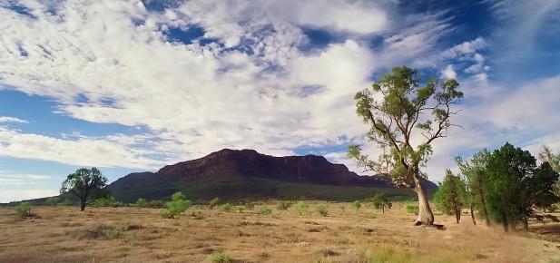 V dálce se zvedá masiv Flinders Ranges...