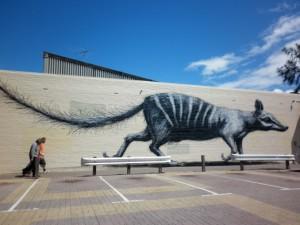 Street art ve Fremantlu - to zvířátko je numbat, zvířecí symbol Západní Austrálie.