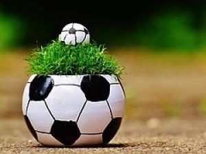 Zelená je tráva, fotbal to je hra... Zahrajte si!
