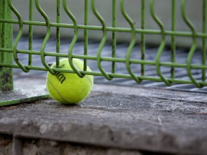 tenisovy kviz - radek stepanek - kukabara