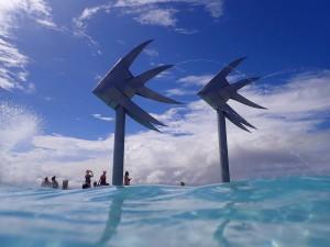 Cairns - laguna - cestovani - kukabara